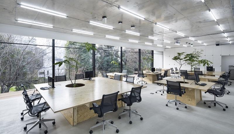 Văn phòng mở